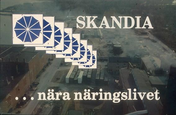 SKN001448