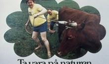 """Affisch: """"Ta vara på naturen"""""""
